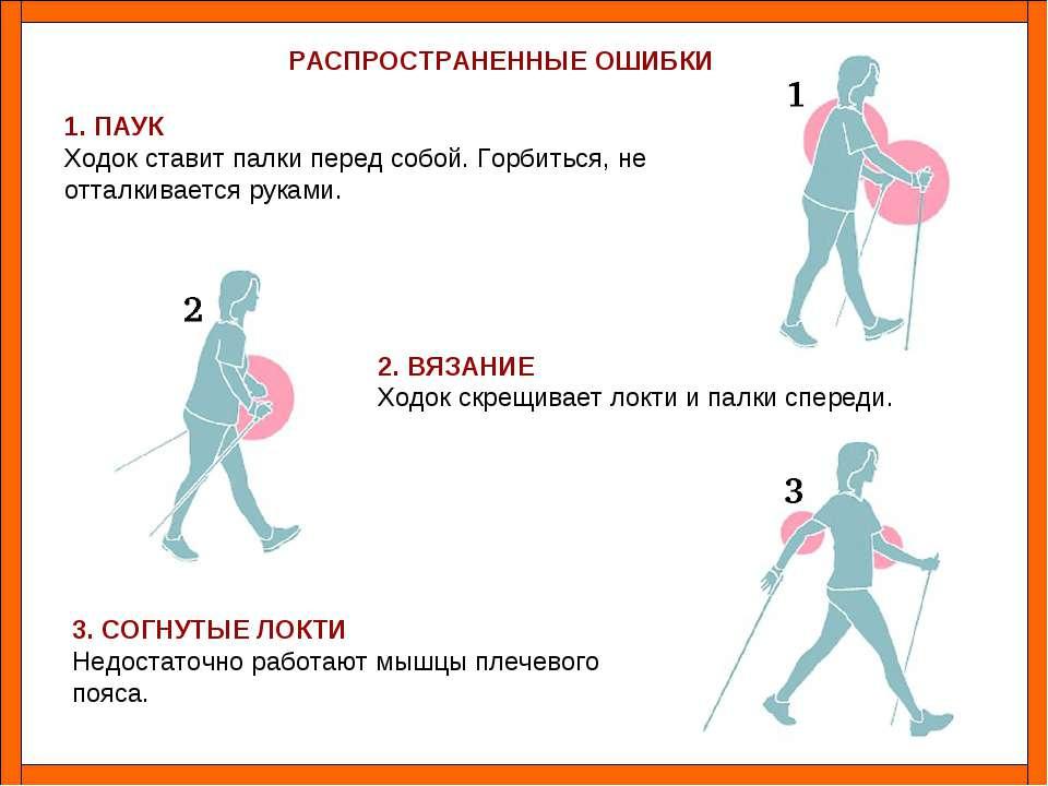 Ходьба с лыжными палками для похудения